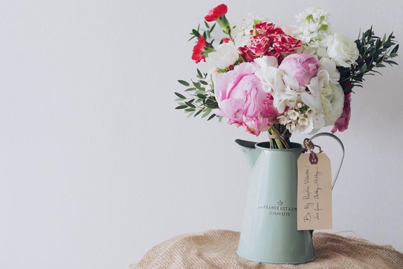 Rosas en macetas Ferpectas
