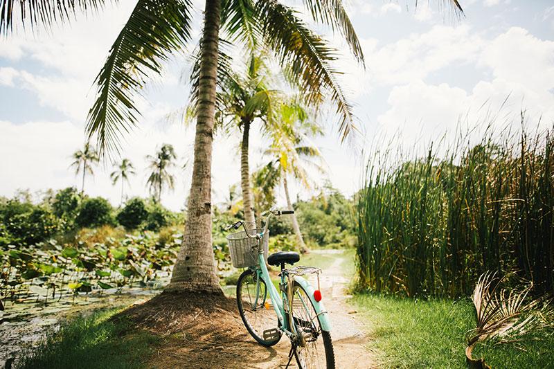 Bicicletas de bambú